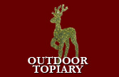 Outdoor Topiary