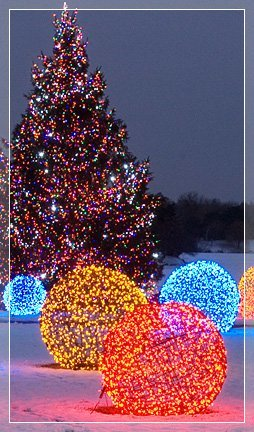 chicago botanic garden wholesale sign up - Cheap Christmas Lights Bulk