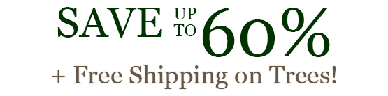 Save up to 60% + Free Shipping on Trees