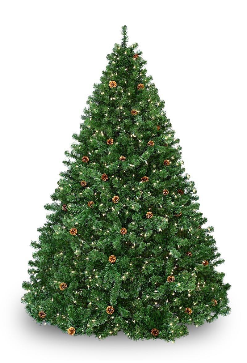 Winchester Fir Prelit Tree - Christmas Lights, Etc