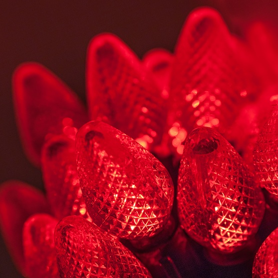 "25 C7 Red LED Christmas Lights, 8"" Spacing"