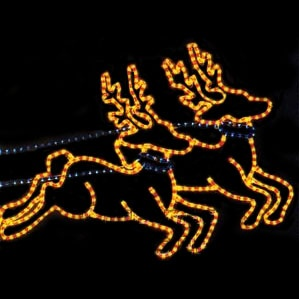 Reindeer Team Rope Light