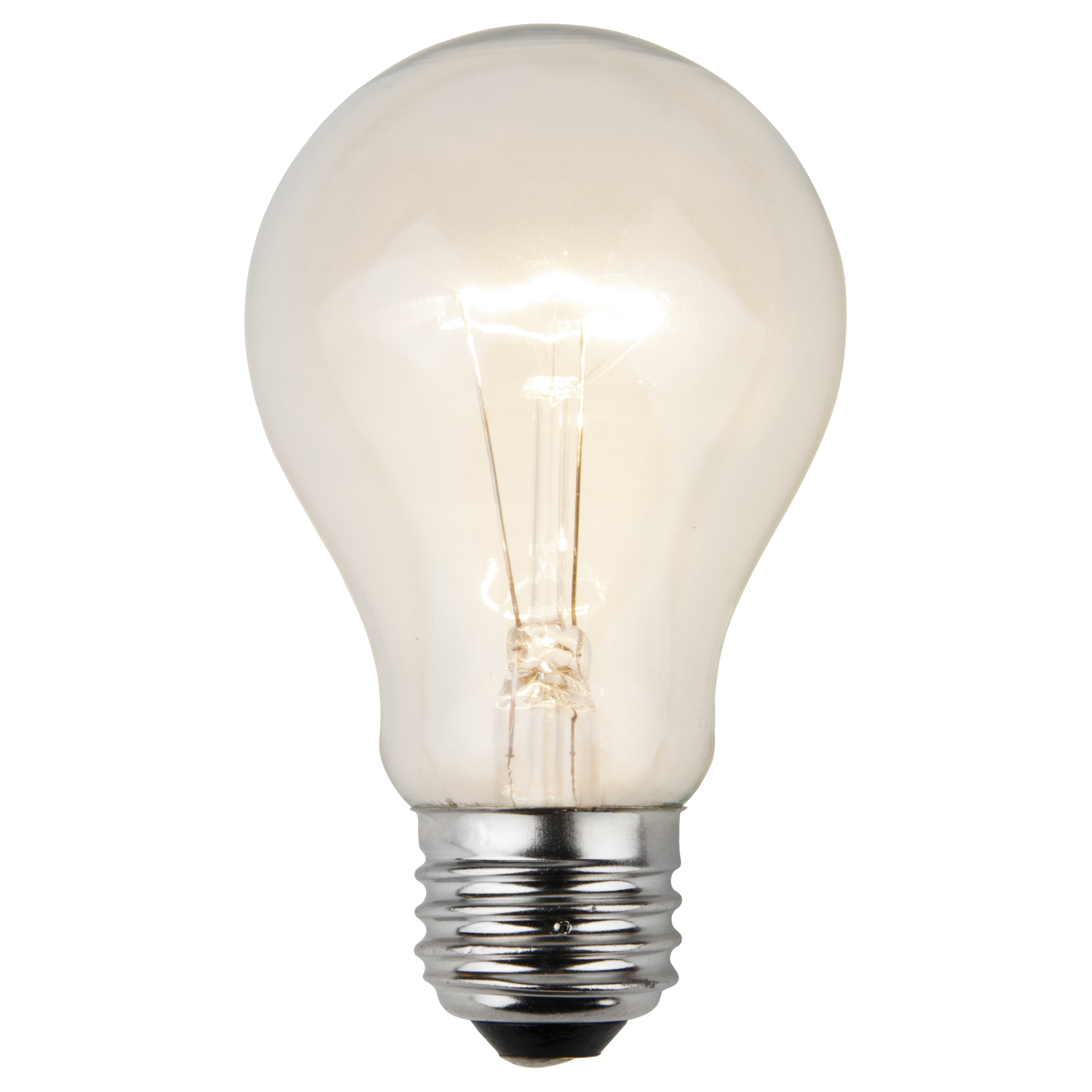 A19 Clear Transparent Incandescent Bulb