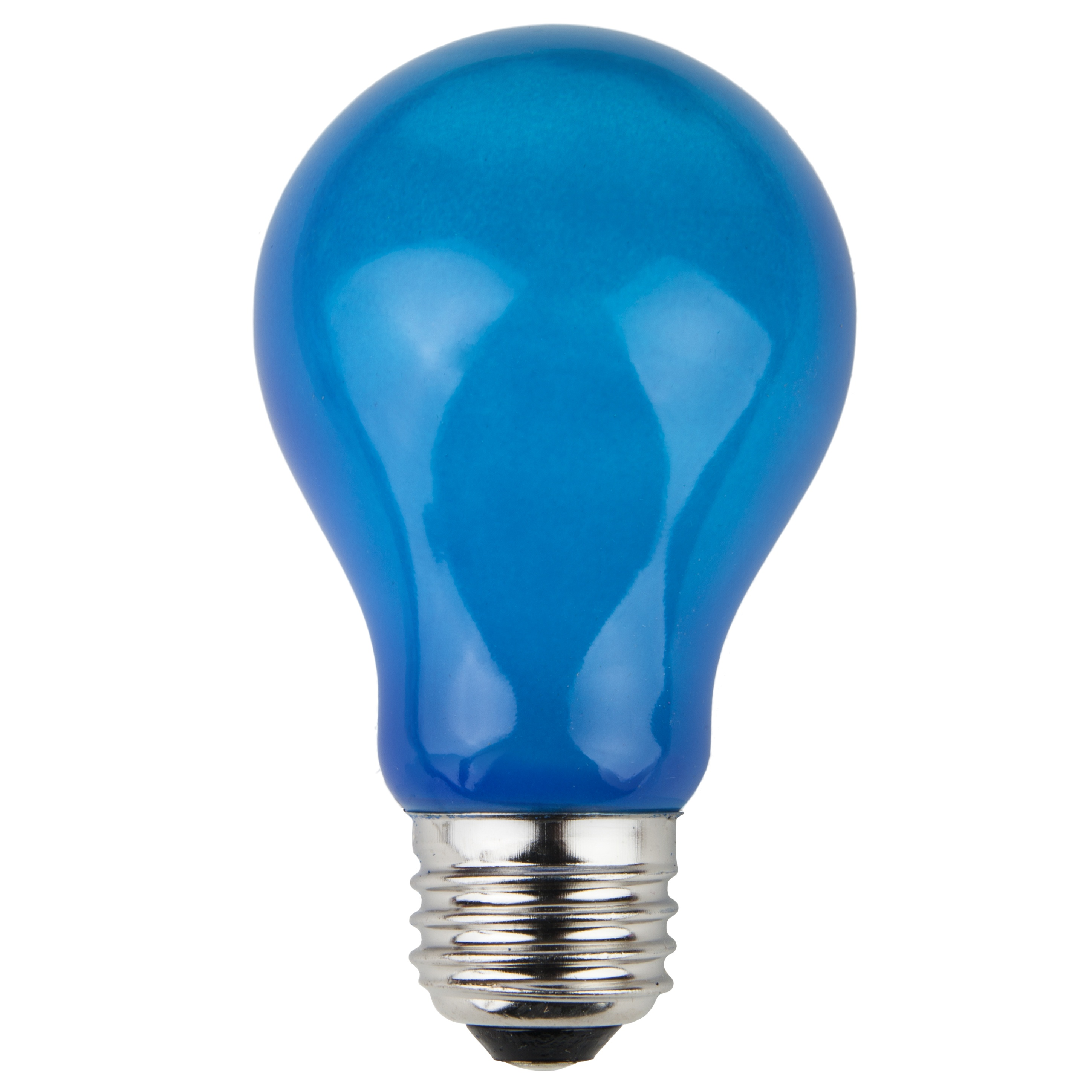 A19 Blue Opaque Incandescent Bulb