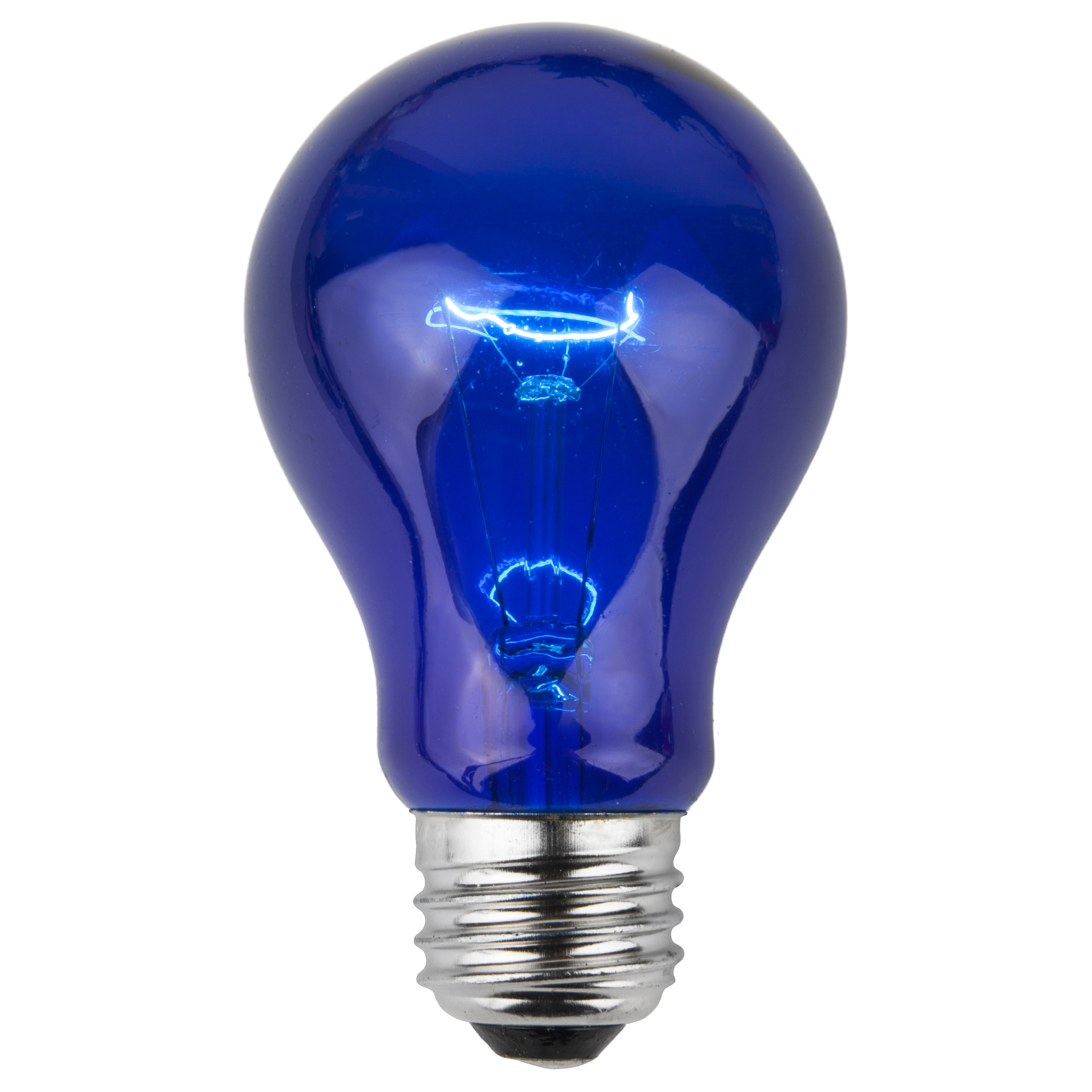 A19 Blue Transparent Incandescent Bulb