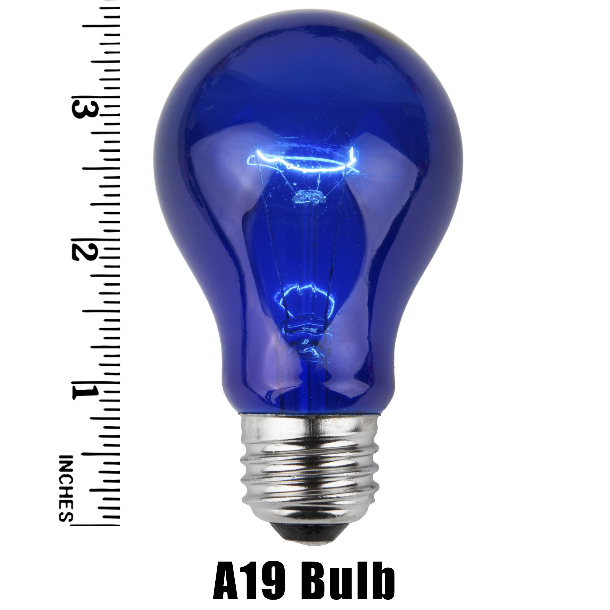 A19 Blue Transparent Incandescent Bulb Measurement
