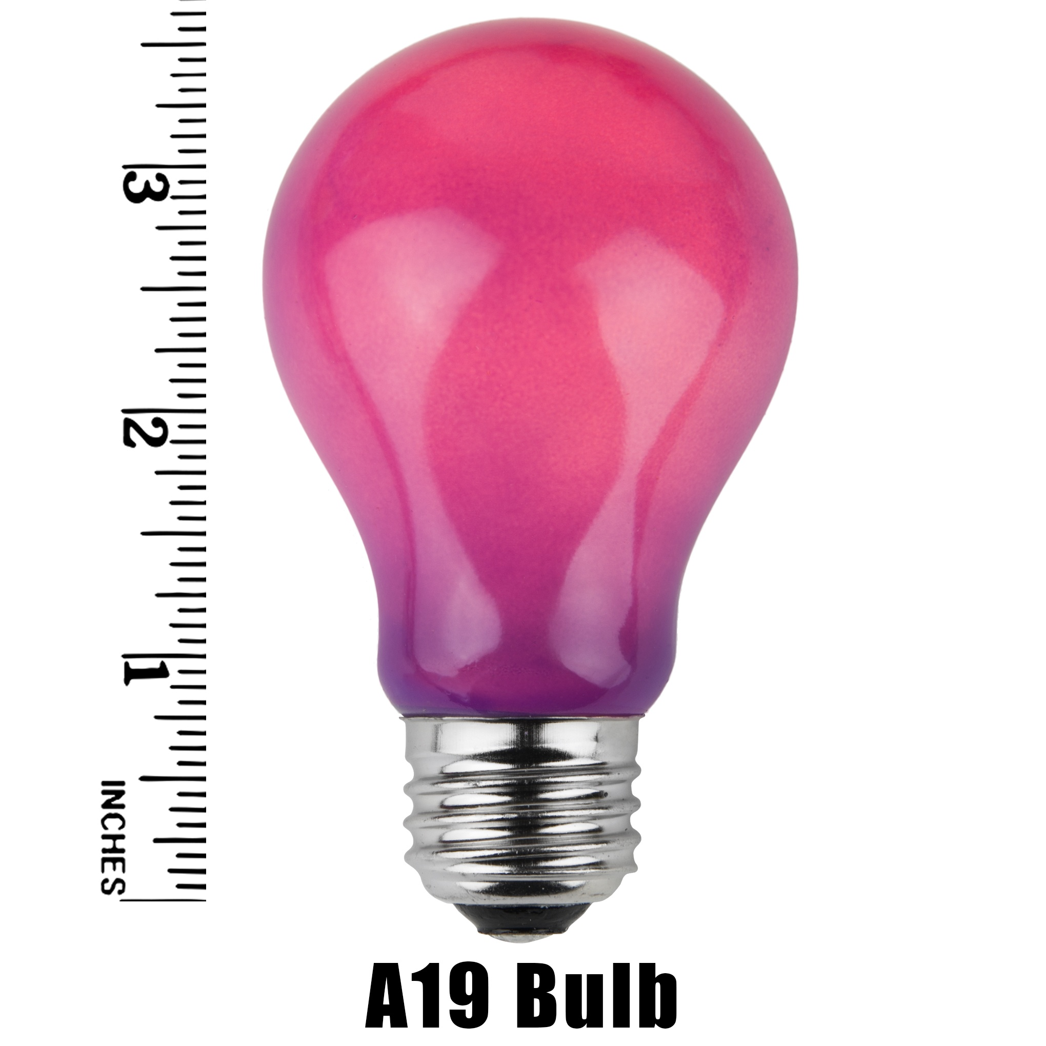 A19 Purple Opaque Incandescent Bulb Measurement