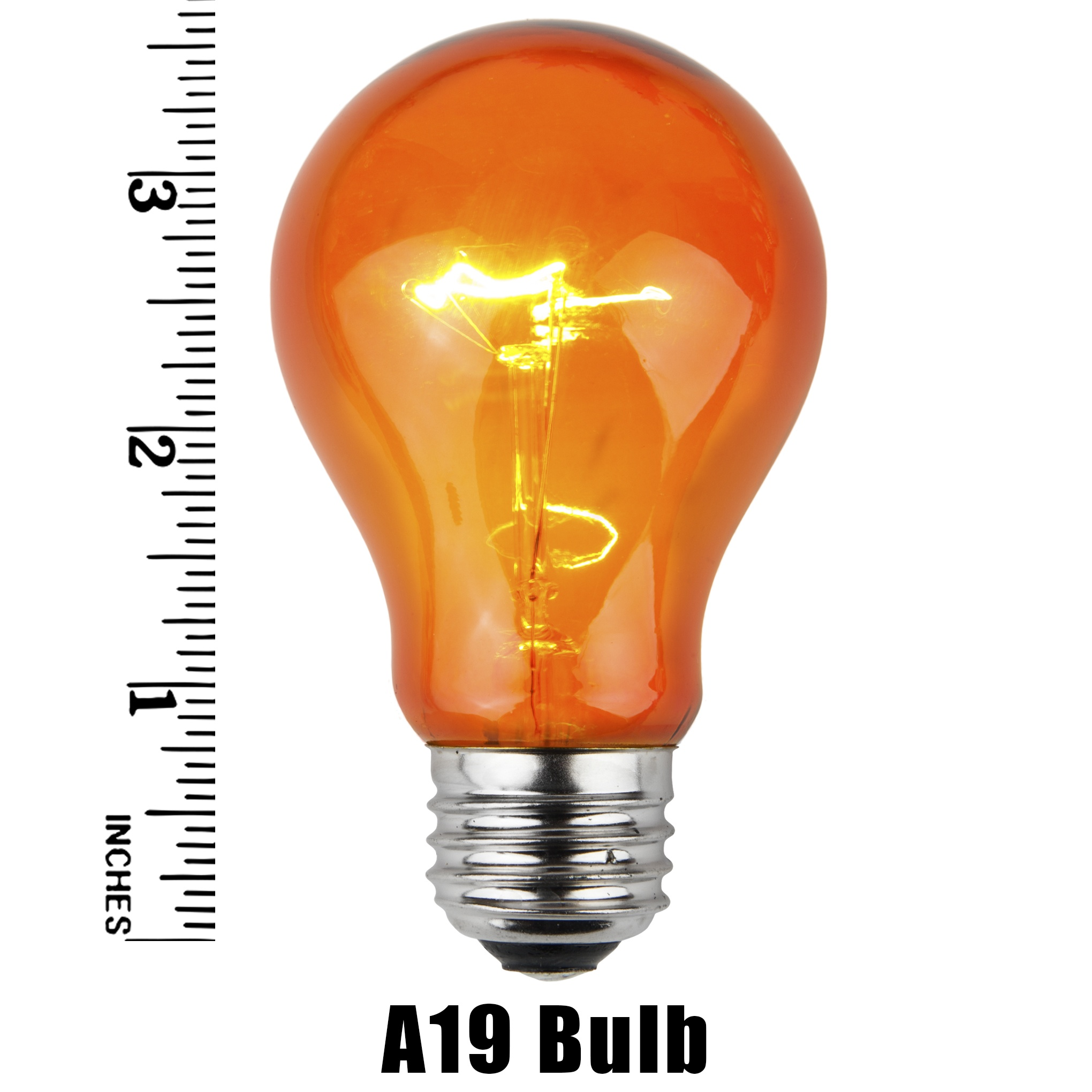 A19 Amber Transparent Incandescent Bulb Measurement