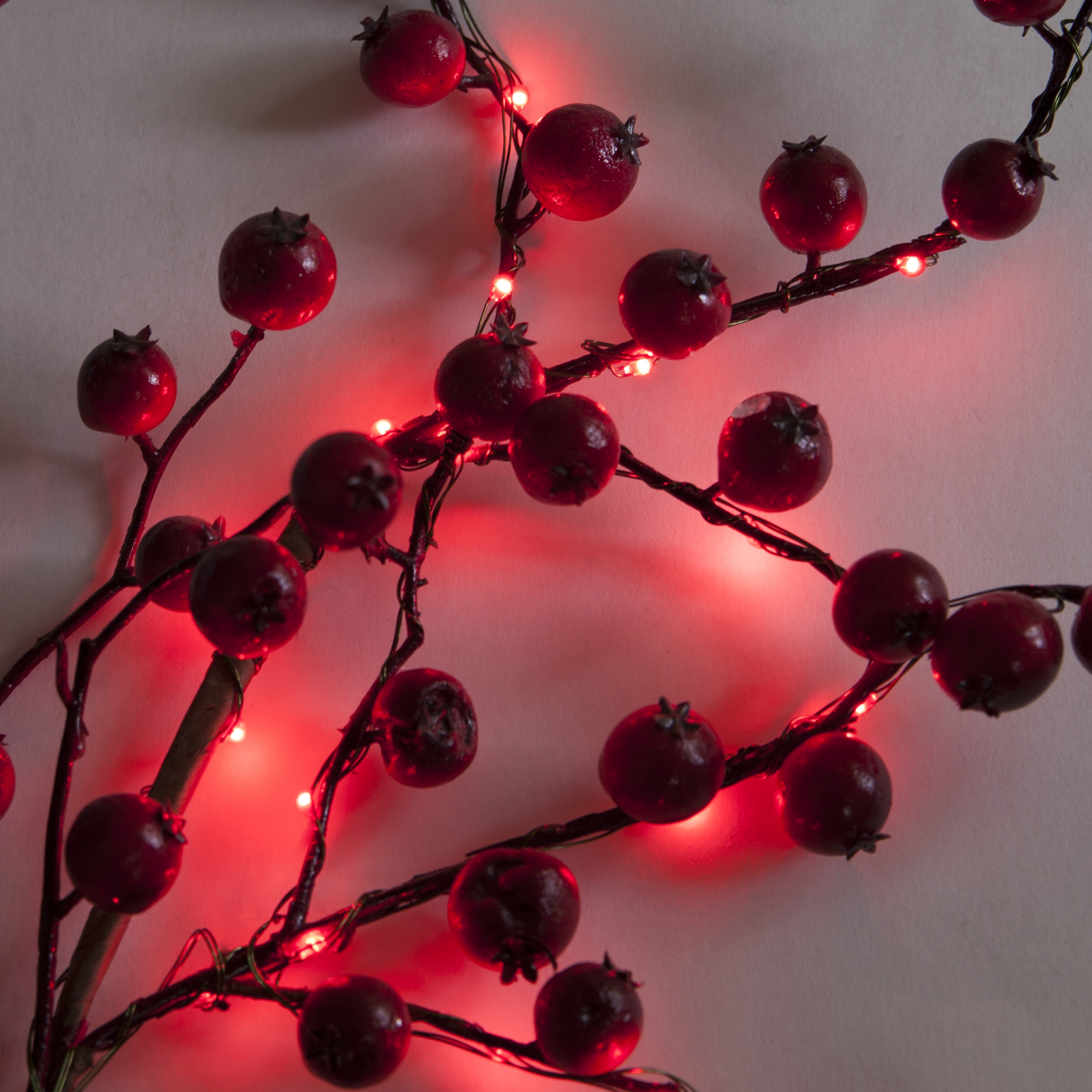 Red Fairy Lights Wrapped Around Branch with Berries