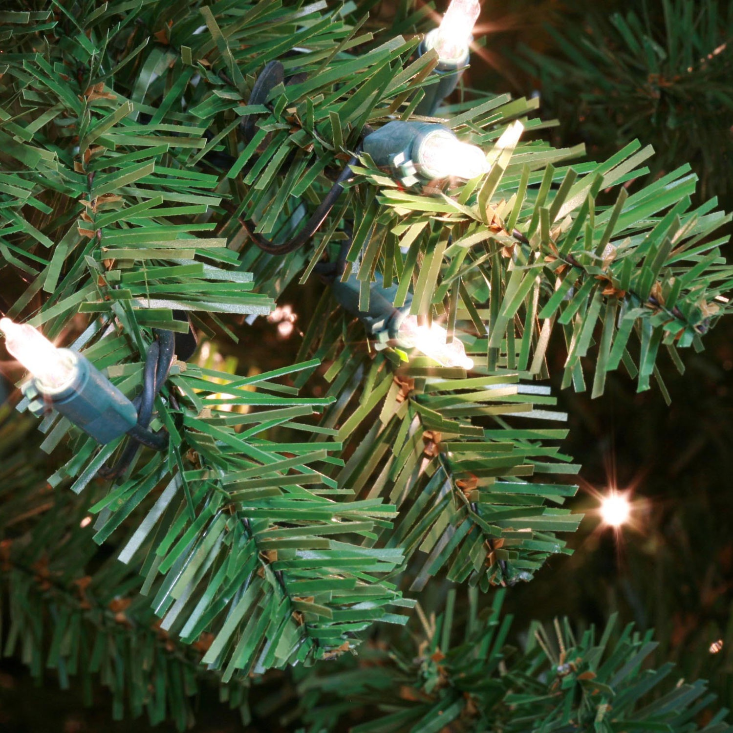 Douglas Fir Christmas Tree Detail