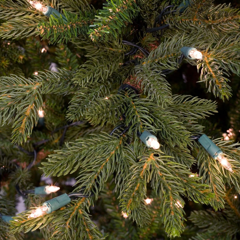 Canadian Fir Prelit Tree - Christmas Lights, Etc