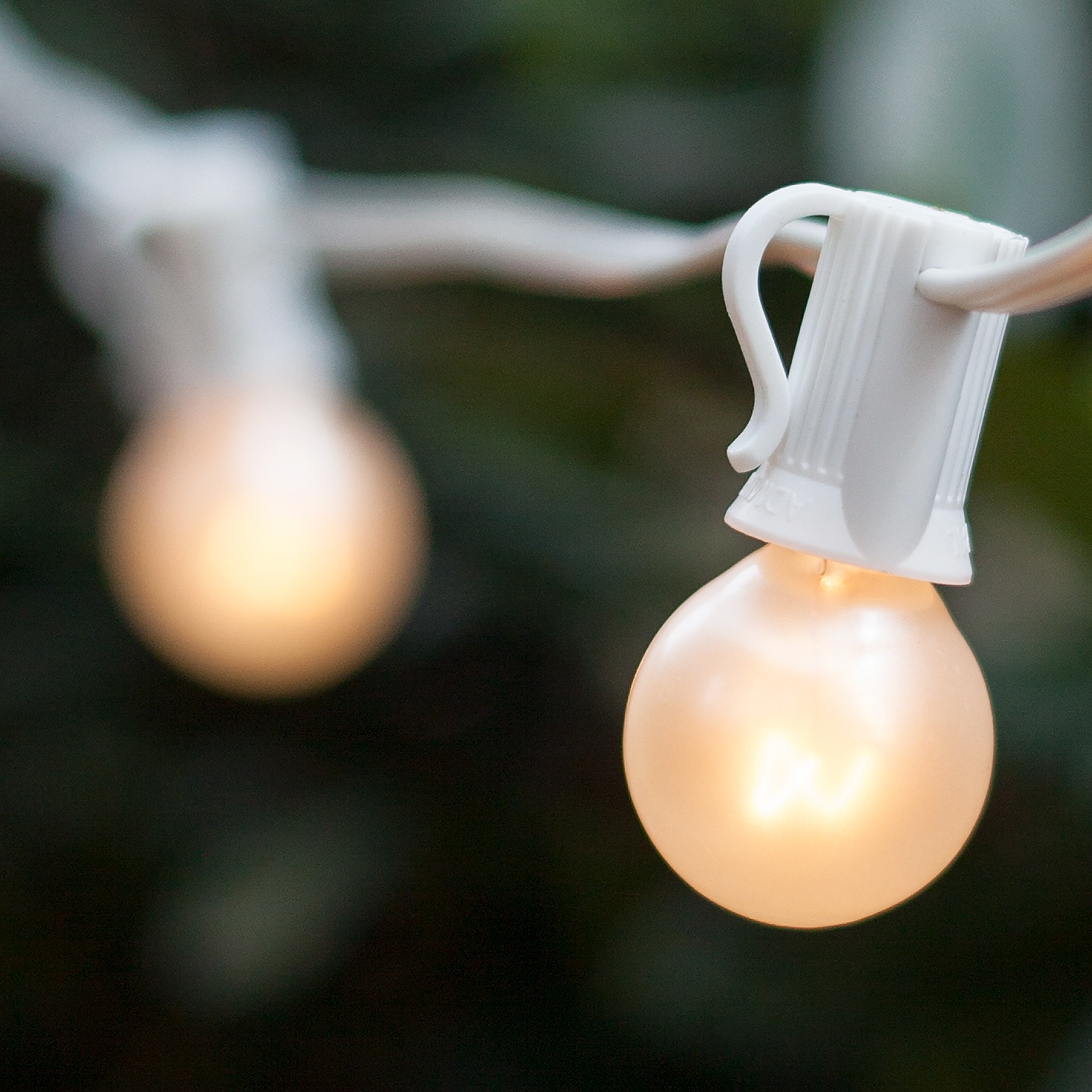 Pearl White Bulbs on White Wire