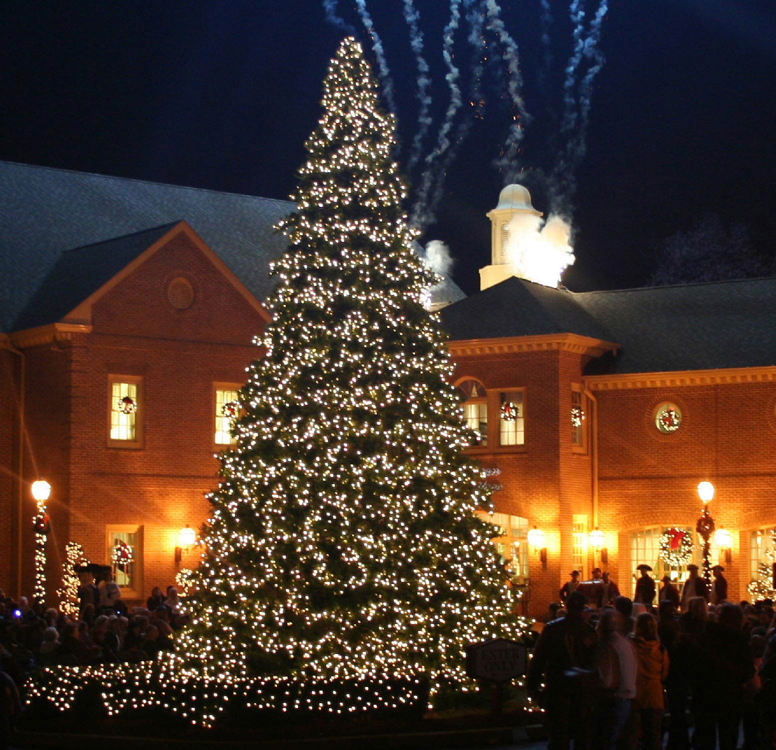 20' Full Pre-Lit Giant Everest Fir Tree, 7140 Clear Lamps