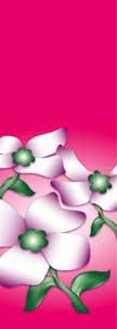 "Dogwood Flowers on Pink Background Light Pole Banner 30"" x 96"""