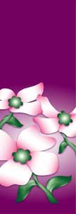 "Dogwood Flowers on Purple Background Light Pole Banner 30"" x 84"""