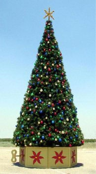 34' Unlit Rocky Mountain Pine Tree