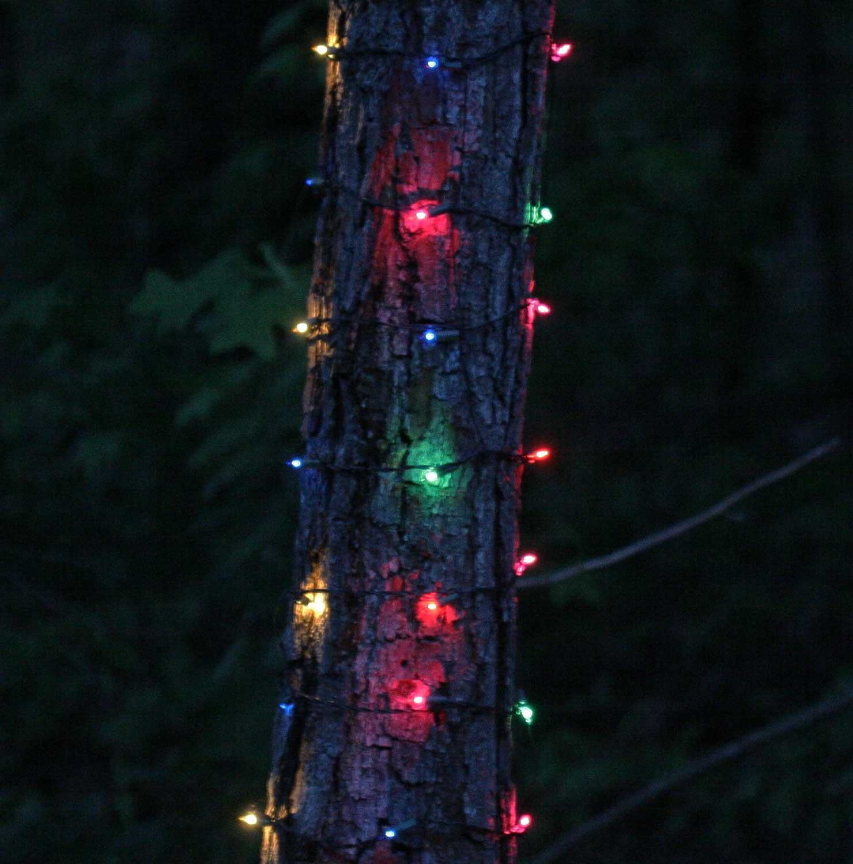 Christmas Net Lights 6 W X 12 39 H Trunk Wrap 150 Multi
