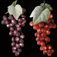 Chili Pepper And Grape Cluster Lights